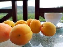 Свежие абрикосы разбросанные на таблицу стоковая фотография rf