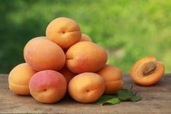 Свежие абрикосы Стоковые Фотографии RF