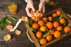 Свежие апельсины tangerine на деревянном столе закрепляя включенный слезли путь мандарина, котор Половины, куски и весь крупный п Стоковое Фото