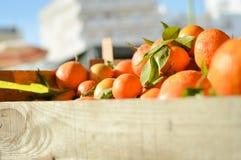 Свежие апельсины на рынке в деревянной коробке Стоковое Изображение