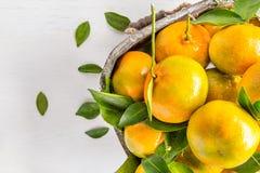 Свежие апельсины от сада Стоковое Изображение