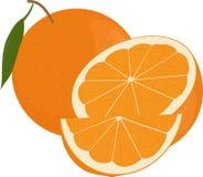 Свежие апельсины приносить с зелеными лист, весь и половиной изолированными на белизне Бесплатная Иллюстрация
