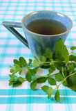 Свежие бальзам лимона и чашка травяного питья на скатерти стоковые фото