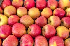 Свежие БИО яблоки будучи проданным на стойле рынка фермеров стоковая фотография rf
