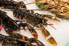Свежие большие раки, шримсы и омар на рынке стоковое изображение rf