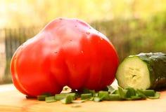 Свежие большие томат и огурец сердца льва Стоковые Фото