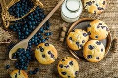 свежие булочки Стоковое Изображение