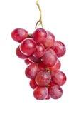 свежие виноградины красные Стоковое Фото