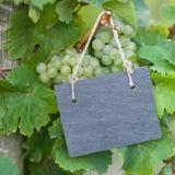 Свежие виноградины, шифер стоковое фото