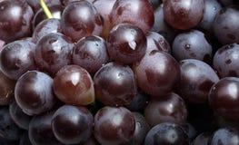 свежие виноградины Стоковые Фото