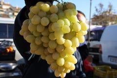 свежие виноградины Стоковое фото RF
