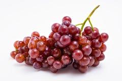 свежие виноградины красные Стоковая Фотография