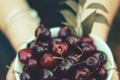 Свежие вишни в шаре стоковое фото