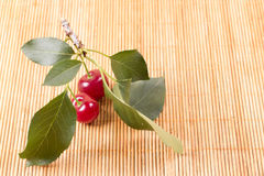 Свежие вишни на деревянной таблице Стоковое Фото