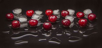 Свежие вишни с кубами и водой льда стоковая фотография rf