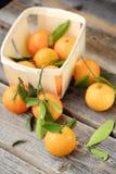 Свежие вкусные tangerines с листьями на деревянном столе Стоковое фото RF