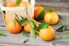 Свежие вкусные tangerines с листьями на деревянном столе Стоковая Фотография