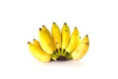 Свежие все бананы Стоковая Фотография RF