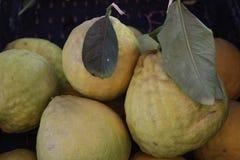 Свежие выбранные лимоны на рынке стоковые изображения rf