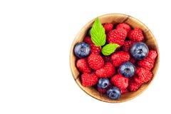 Свежие голубики при поленики изолированные на белизне ягоды здоровые Собирать поленики и голубики Реклама плодоовощ Стоковые Фото