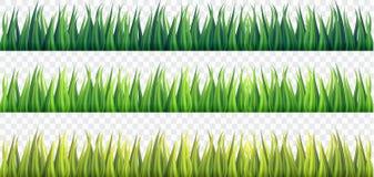 Свежие границы зеленой травы на белизне изолировали предпосылку, Стоковая Фотография RF