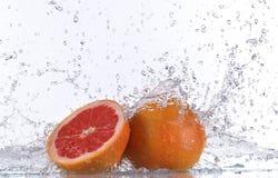 Свежие грейпфруты с выплеском воды Стоковое фото RF