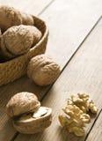 свежие грецкие орехи Стоковая Фотография
