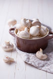 свежие грибы Стоковые Фотографии RF