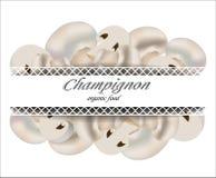 свежие грибы Champignon Натуральные продукты Стоковые Изображения RF