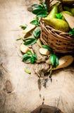 свежие груши Стоковое Фото
