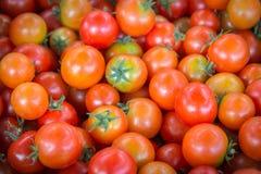 Свежие деревенские томаты в под открытым небом рынке стоковые фото