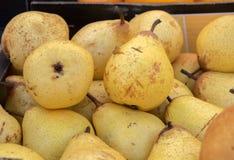 Свежие желтые груши продали на местном рынке города Провансаль стоковое фото rf