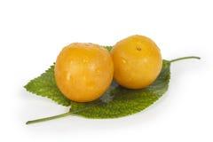 Свежие желтые сливы на зеленых листьях Стоковое фото RF