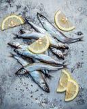 Свежие задвижки Shishamo рыб яичка полно Рыба Shishamo популярна Стоковые Фото