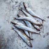 Свежие задвижки Shishamo рыб яичка полно Рыба Shishamo популярна Стоковое Изображение