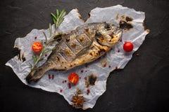Свежие зажаренные рыбы dorado со специями на черной предпосылке стоковые фото