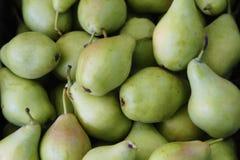 свежие зеленые груши Стоковое Изображение RF