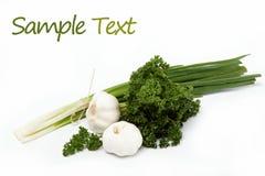 Свежие зеленые изолированные луки, чеснок и петрушка. Стоковое фото RF