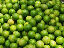 свежие зеленые известки Стоковое Изображение RF