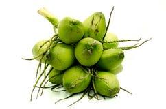 Свежие зеленые кокосы Стоковые Фотографии RF