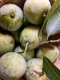 Свежие зеленые манго Кералы moovandan стоковое фото