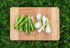Свежие зеленые луки на старой деревянной разделочной доске, еда крупного плана, outdoors сняли Стоковые Фото