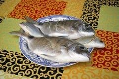 Свежие золотые рыбы Стоковые Фотографии RF