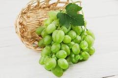 Свежие зрелые зеленые виноградины с одним листом полили из плетеной корзины на старых деревянных белых планках Стоковая Фотография RF