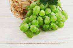 Свежие зрелые зеленые виноградины с одним листом полили из плетеной корзины на старых деревянных белых планках Стоковое Фото