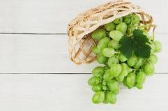 Свежие зрелые зеленые виноградины с одним листом полили из плетеной корзины на старых деревянных белых планках Стоковое фото RF