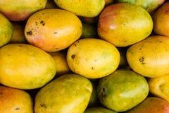 Свежие зрелые манго Стоковое Изображение