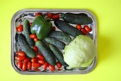 Свежие зрелые томаты, огурцы, зеленое paperika и салат айсберга на подносе Стоковое Изображение