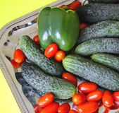Свежие зрелые томаты, огурцы, зеленое paperika Стоковое Изображение