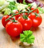 свежие зрелые томаты Стоковая Фотография
